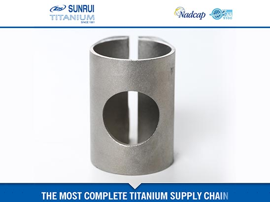 Titanium Investment (precision) Casting 1